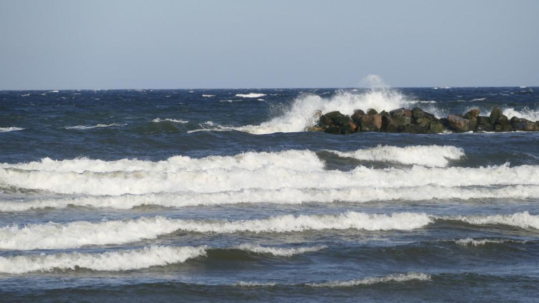 Meeresrauschen in Damp